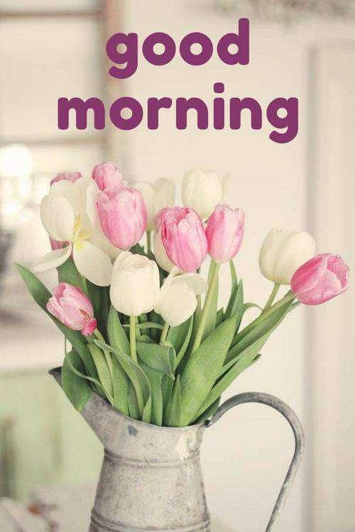 Good morning for a special person | goodmorningpics.com