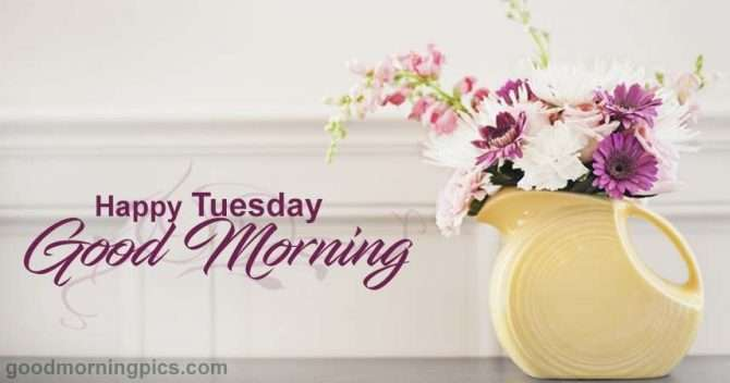 Happy Tuesday Goodmorningpicscom