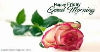 Happy Friday with Beautiful images