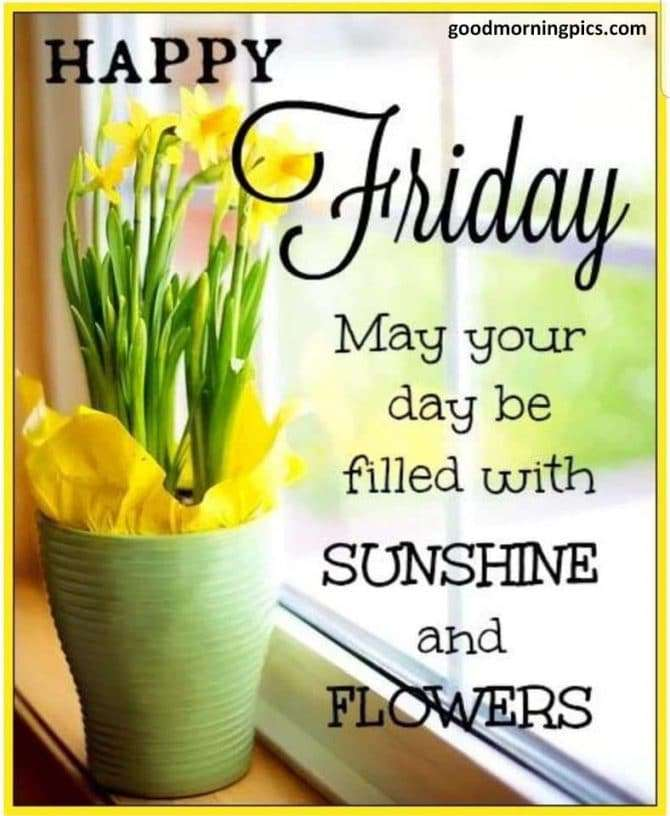 good morning flowers and sunshine