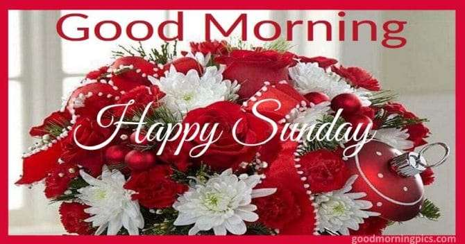 Pictures morning with bouquet of red roses as a gift for a happy Sunday