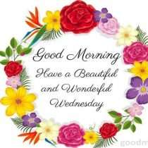 Have a wonderful Wednesday
