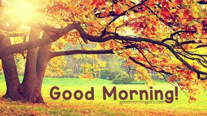 Good morning images autumn